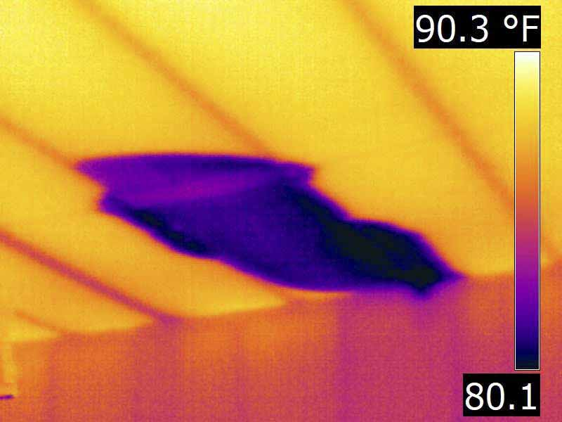 infrared Houston home inspection moisture detection