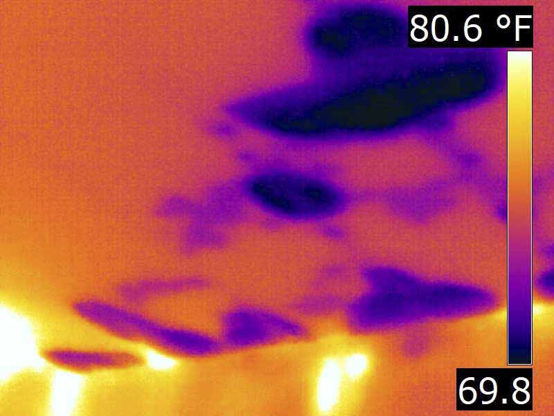 Houston Infrared home Inspection - moisture intrusion